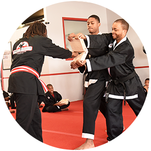 Martial Arts Warrior Institute of Chicago